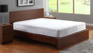 Signature Sleep Contour 8-Inch Independently Encased Coil Mattress with CertiPUR-US Certified Foam, Queen. Available in Multiple Sizes